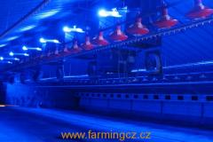 agrilight-agriled-blue-drubez