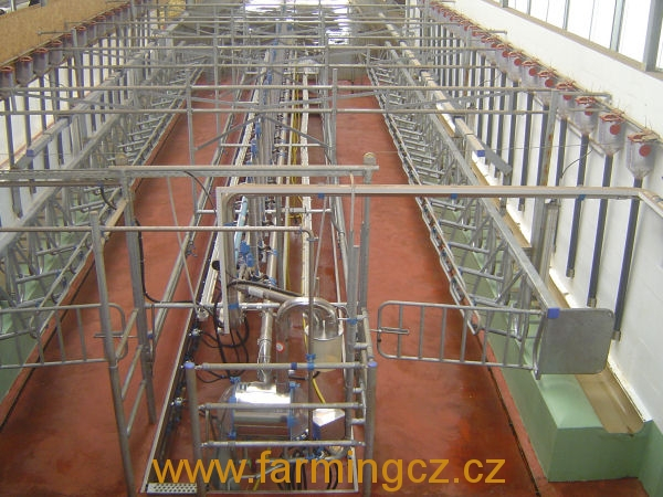 dairymaster-swing-over-22-b