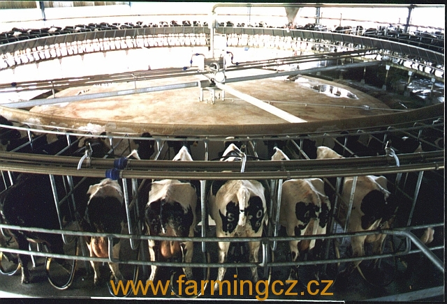 kruhova-dojirna-dairymaster-swift-flo-100-dojicich-mist