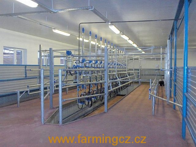 dojirna-dairymaster-swiftflo-swing-over-1