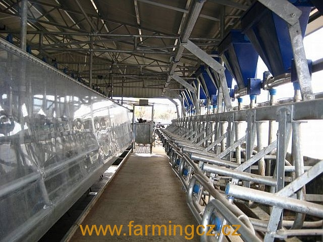 dojirna-dairymaster-swiftflo-swing-over-16