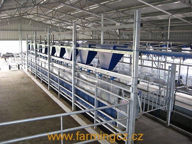 dojirna-dairymaster-swiftflo-swing-over-17