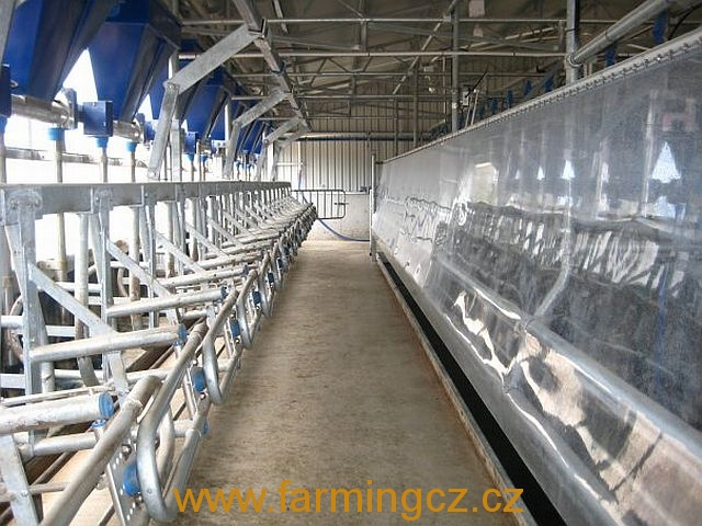 dojirna-dairymaster-swiftflo-swing-over-18
