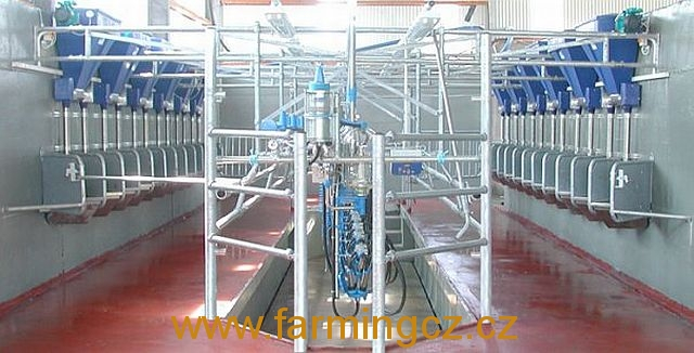 dojirna-dairymaster-swiftflo-swing-over-2