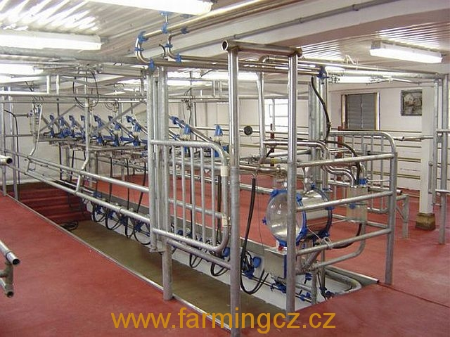 dojirna-dairymaster-swiftflo-swing-over-3