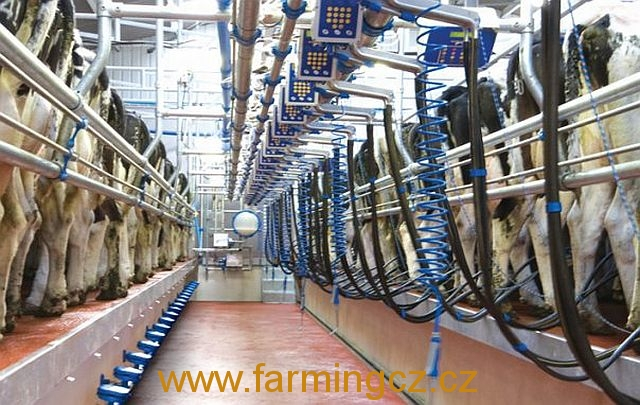 dojirna-dairymaster-swiftflo-swing-over-8